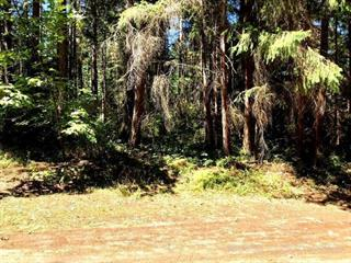 Lot for sale in Nanaimo, Protection Island, 85 Pirates Lane, 468355 | Realtylink.org