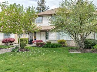 House for sale in Central Meadows, Pitt Meadows, Pitt Meadows, 8 19283 122a Avenue, 262477249 | Realtylink.org
