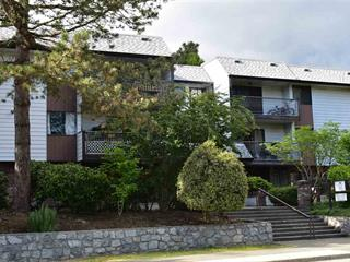 Apartment for sale in East Newton, Surrey, Surrey, 112 13977 74 Avenue, 262478103 | Realtylink.org