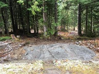 Lot for sale in Hope Sunshine Valley, Hope, Hope, Hg123 Old Hope Princeton Highway, 262463211 | Realtylink.org