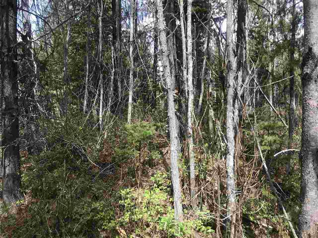 Lot for sale in Chief Lake Road, Prince George, PG Rural North, Lot 11 Chief Lake Road, 262447209 | Realtylink.org
