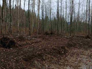 Lot for sale in Mission BC, Mission, Mission, Lt 1 Willingdon Street, 262478092 | Realtylink.org