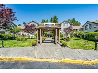 Apartment for sale in White Rock, South Surrey White Rock, 219 15991 Thrift Avenue, 262478104 | Realtylink.org