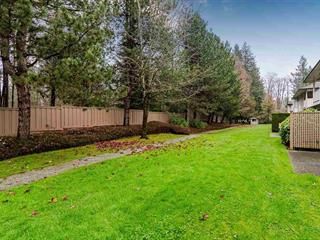 Townhouse for sale in Walnut Grove, Langley, Langley, 247 20391 96 Avenue, 262475923 | Realtylink.org