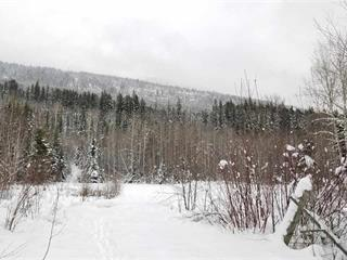 Lot for sale in Valemount - Rural West, Valemount, Robson Valley, Dl 6034 E McBride 16 Highway, 262446166 | Realtylink.org