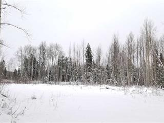 Lot for sale in Valemount - Rural West, Valemount, Robson Valley, Lt 1 Dl6034 E McBride 16 Highway, 262446169 | Realtylink.org