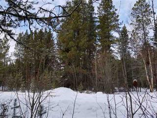 Lot for sale in Valemount - Town, Valemount, Robson Valley, 1225 Canoe View Place, 262448084 | Realtylink.org