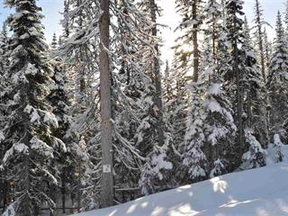 Lot for sale in Smithers - Rural, Smithers, Smithers And Area, 224 Alpine Way, 262475532 | Realtylink.org