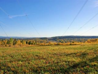 Lot for sale in Salmon Valley, PG Rural North, McLeod Road, 262356856 | Realtylink.org