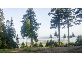 Lot for sale in Elgin Chantrell, Surrey, South Surrey White Rock, 13005 Crescent Road, 262420940 | Realtylink.org
