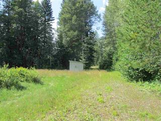 Lot for sale in Valemount - Rural West, Valemount, Robson Valley, 325 Sunnyview Road, 262418657 | Realtylink.org