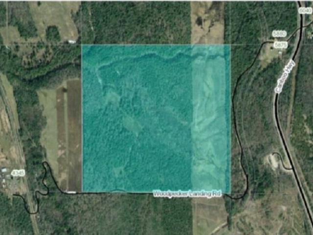 Lot for sale in Red Rock/Stoner, Red Rock / Stoner, PG Rural South, Woodpecker Landing Road, 262390383 | Realtylink.org