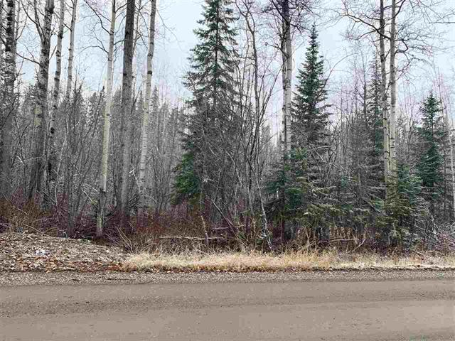 Lot for sale in Haldi, Prince George, PG City South, 9777 Birchill Crescent, 262439607 | Realtylink.org