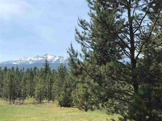 Lot for sale in Valemount - Town, Valemount, Robson Valley, Lot 2 Cranberry Lake Road, 262395850 | Realtylink.org