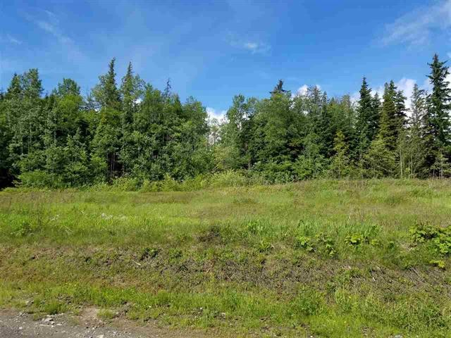 Lot for sale in Thornhill, Terrace, Terrace, Dl 840 S 37 Highway, 262398143   Realtylink.org