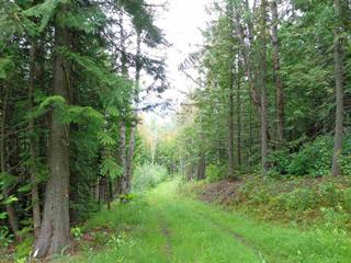 Lot for sale in Valemount - Rural West, Valemount, Robson Valley, Pepper Pit Road, 262416544 | Realtylink.org