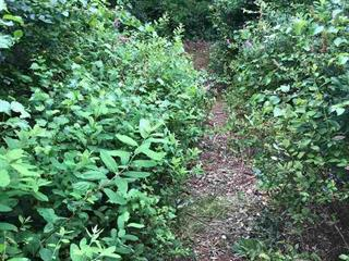 Lot for sale in McLennan, Richmond, Richmond, Lot E No Access Road, 262414829 | Realtylink.org