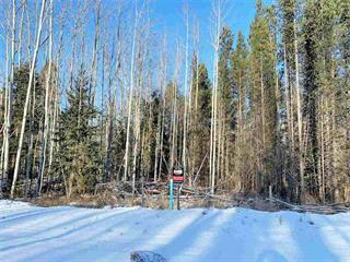 Lot for sale in Valemount - Town, Valemount, Robson Valley, 1000 18th Avenue, 262385921 | Realtylink.org