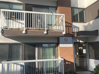 Apartment for sale in Broadmoor, Richmond, Richmond, 203 8020 Ryan Road, 262453723   Realtylink.org