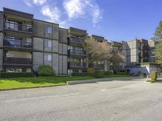 Apartment for sale in Whalley, Surrey, North Surrey, 211 13501 96 Avenue, 262470720 | Realtylink.org
