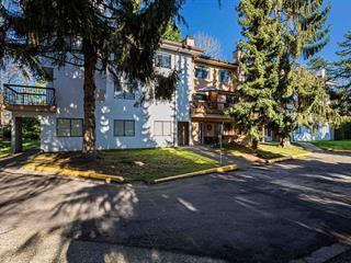 Apartment for sale in West Newton, Surrey, Surrey, 201 13283 70b Avenue, 262459432 | Realtylink.org