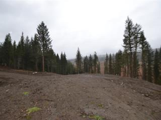 Lot for sale in Williams Lake - Rural South, Williams Lake, Williams Lake, Lot 2 Dog Creek Road, 262437117 | Realtylink.org