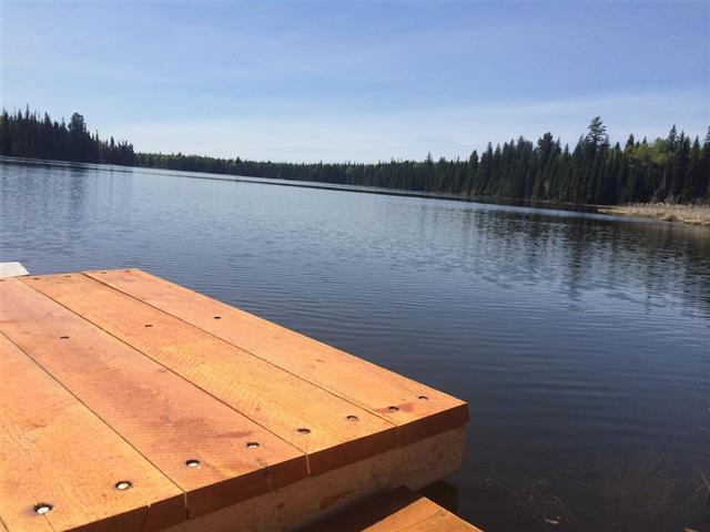 Lot for sale in Horse Lake, 100 Mile House, Dl 2749 Doman Road, 262511910 | Realtylink.org