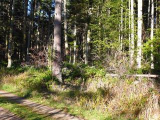 Lot for sale in Salt Spring Island, Islands-Van. & Gulf, 123 Lyoness Drive, 262506113 | Realtylink.org