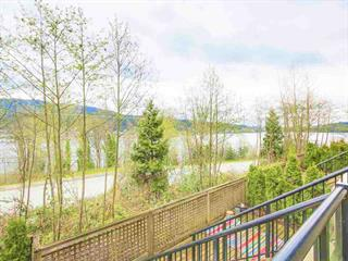 Apartment for sale in College Park PM, Port Moody, Port Moody, 107 160 Shoreline Circle, 262502351 | Realtylink.org