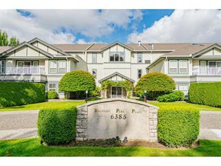 Apartment for sale in Panorama Ridge, Surrey, Surrey, 108 6385 121 Street, 262496060 | Realtylink.org