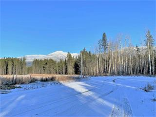 Lot for sale in Valemount - Rural South, Valemount, Robson Valley, 1175 Fowler Place, 262418663 | Realtylink.org