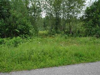 Lot for sale in Quesnel Rural - South, Quesnel, Quesnel, 3264 Hayman Crescent, 262493631 | Realtylink.org