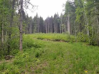 Lot for sale in Valemount - Rural West, Valemount, Robson Valley, Lot 2 Dl6022 E 16 Highway, 262450337 | Realtylink.org