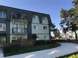 Apartment for sale in South Arm, Richmond, Richmond, 174 8140 Williams Road, 262460240 | Realtylink.org