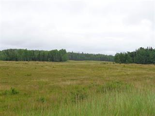 Lot for sale in Vanderhoof - Rural, Vanderhoof, Vanderhoof And Area, Kluskus Forest Service Road, 262136310 | Realtylink.org