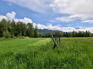 House for sale in McBride - Rural West, McBride, Robson Valley, 6630 Lamco Road, 262492042 | Realtylink.org