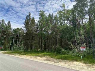 Lot for sale in Valemount - Town, Valemount, Robson Valley, 1005 18th Avenue, 262385911 | Realtylink.org