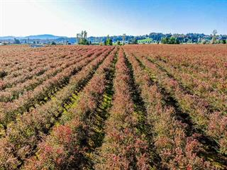 Lot for sale in Matsqui, Abbotsford, Abbotsford, 19.59ac Glenmore Road, 262432598   Realtylink.org