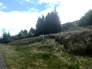 Lot for sale in Port McNeill, Port McNeill, 2055 Pioneer Hill Dr, 470881 | Realtylink.org