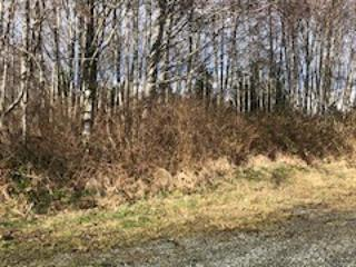 Lot for sale in Port Hardy, Port Hardy,  Park Dr, 438074 | Realtylink.org