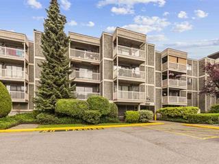 Apartment for sale in Queen Mary Park Surrey, Surrey, Surrey, 302 13525 96 Avenue, 262501757 | Realtylink.org