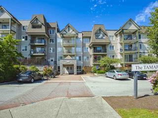 Apartment for sale in Queen Mary Park Surrey, Surrey, Surrey, 402 12083 92a Avenue, 262493425 | Realtylink.org