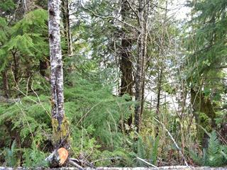 Lot for sale in Winter Harbour, Port Hardy, LT 11 308 Winter Harbour Rd, 463127   Realtylink.org
