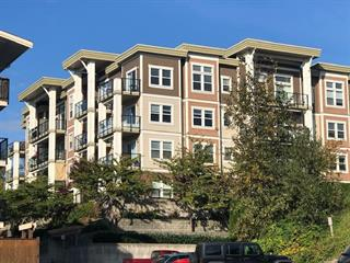 Apartment for sale in West Central, Maple Ridge, Maple Ridge, 210 11580 223 Street, 262532843 | Realtylink.org