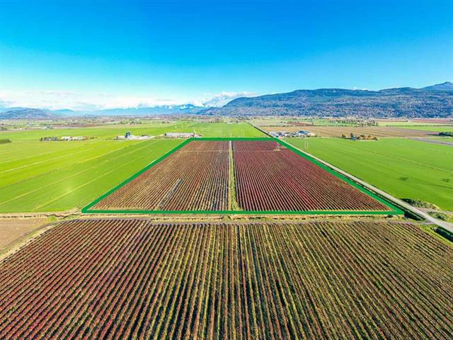 Lot for sale in Sumas Prairie, Abbotsford, Abbotsford, 4081 Dixon Road, 262543421 | Realtylink.org