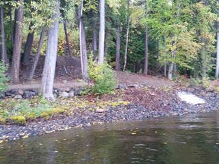 Lot for sale in Canim/Mahood Lake, Canim Lake, 100 Mile House, Lot 1 S Canim Lake Road, 262544004 | Realtylink.org