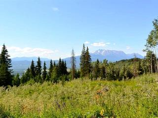 Lot for sale in Smithers - Rural, Smithers, Smithers And Area, Lot 1 Hislop Road, 262513041 | Realtylink.org
