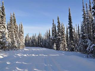 Lot for sale in Smithers - Rural, Smithers, Smithers And Area, 252 Alpine Way, 262475536 | Realtylink.org