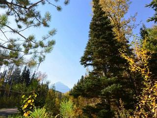 Lot for sale in Smithers - Rural, Smithers, Smithers And Area, Lot 8 Glacier View Road, 262432541 | Realtylink.org