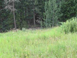 Lot for sale in Williams Lake - Rural North, Williams Lake, Williams Lake, Lot A Firdale Drive, 262506680 | Realtylink.org